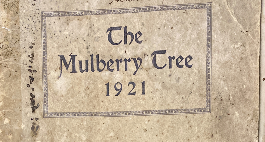 The Mulberry Tree Yearbook 1921 Cover